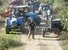 Tractores 2008_10