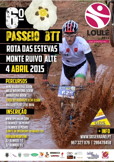 cartaz 2015 in